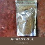Fournisseur poudre de Kigelia à lubumbashi et Kinshasa