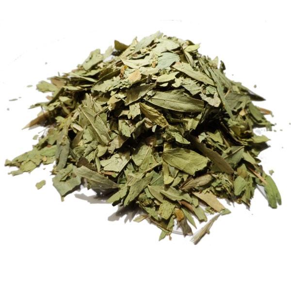 Les feuilles de séné : la plante miracle contre la constipation et le l'excès de graisse