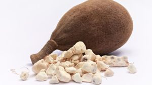 Read more about the article Les multiples bienfaits du Baobab sur la santé
