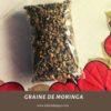 Graine de Moringa gros et details benin, paris, niamey