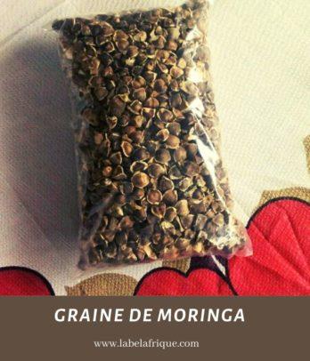 Graine de Moringa gros et details
